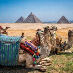 Новогодние чартерные рейсы в Египет опять откладываются
